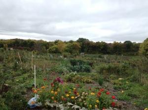la Eagle Heights Garden