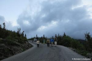 Birding_Auto_Road_by_Kristen_edited-1