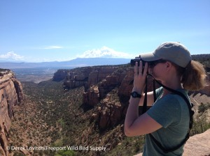Colorado_National_Monument2,7-12-14