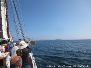 IMG_2142_Heading to Seal, 8-4-14_edited-1