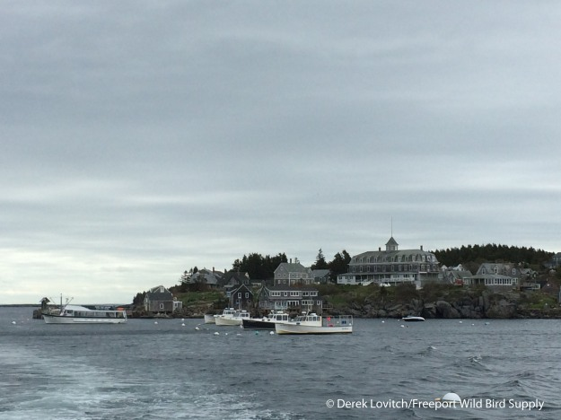 Departing_Monhegan,5-20-15_edited-1