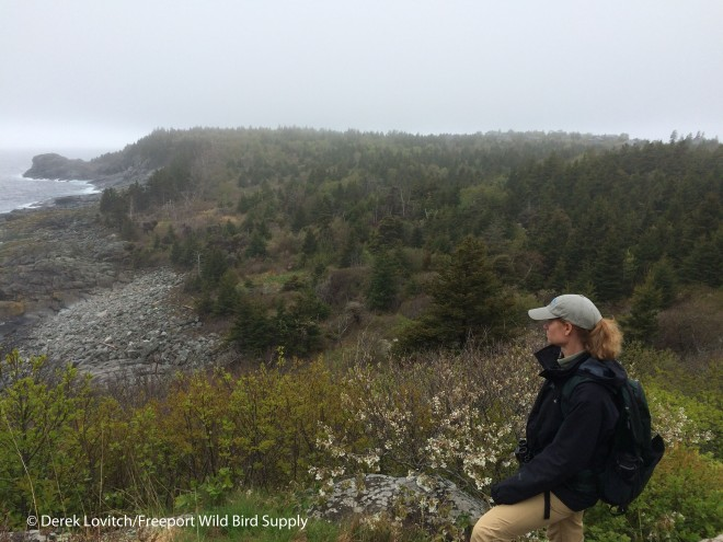 Hiking_East_Side,5-19-15_edited-1