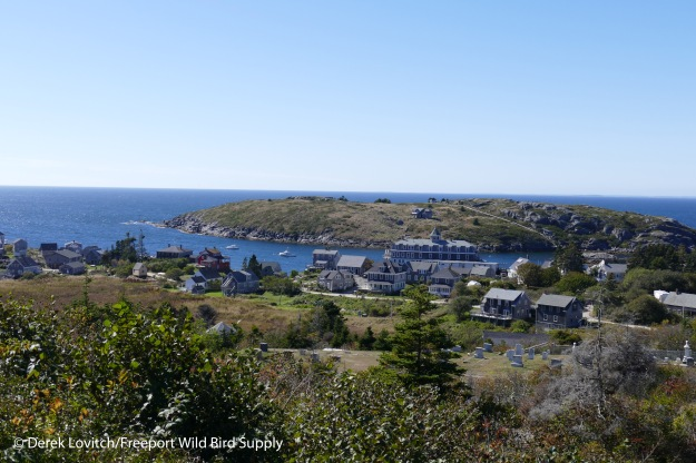 Monhegan_from_lighthouse_edited-1