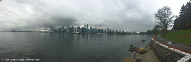 Day2-Stanley Park2