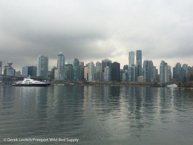 Day2-Stanley Park3