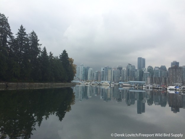 Day2-Stanley Park4