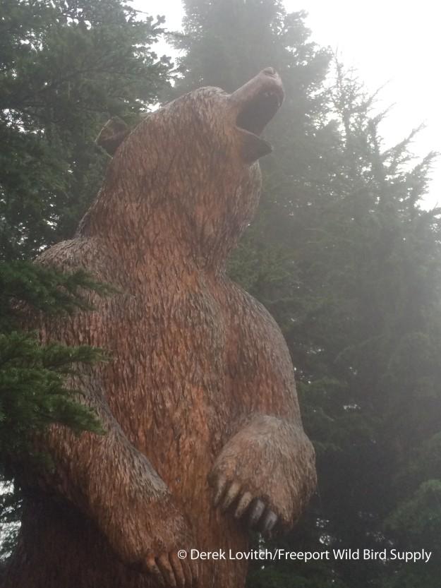 IMG_6678_Day4-GrouseMountain-bear-totem