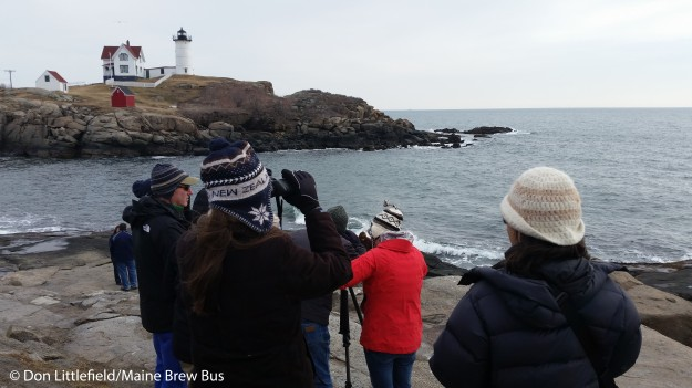 birders at Nubble