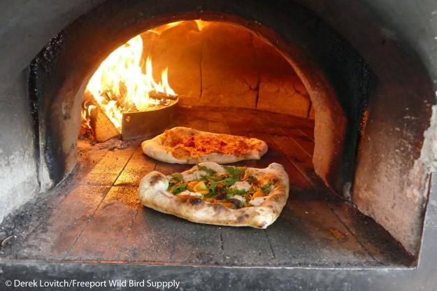L1040912_pizza