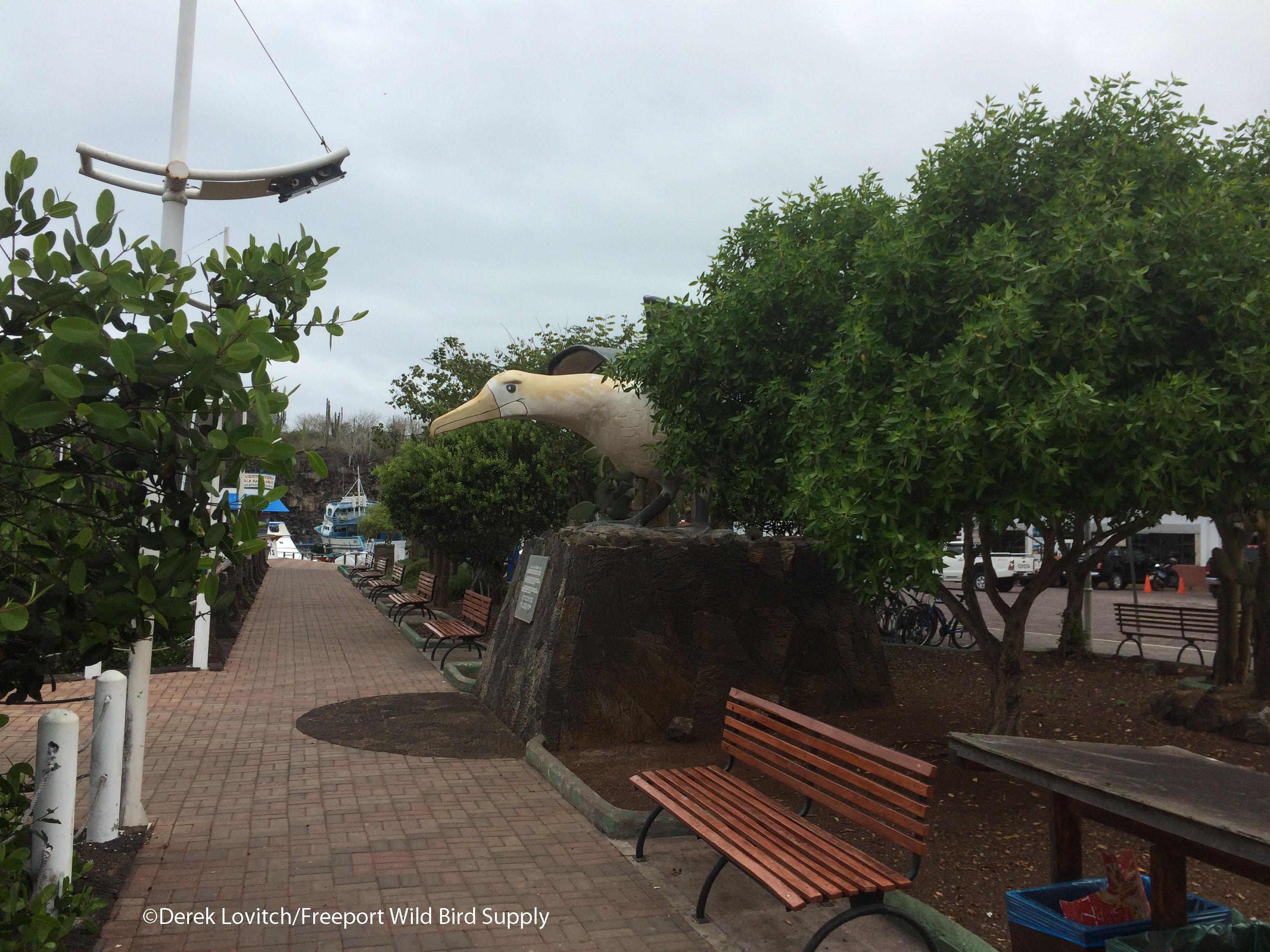 Albatross_monument