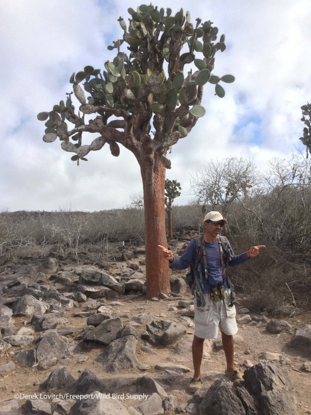 Peter_and_prickly_pear_tree