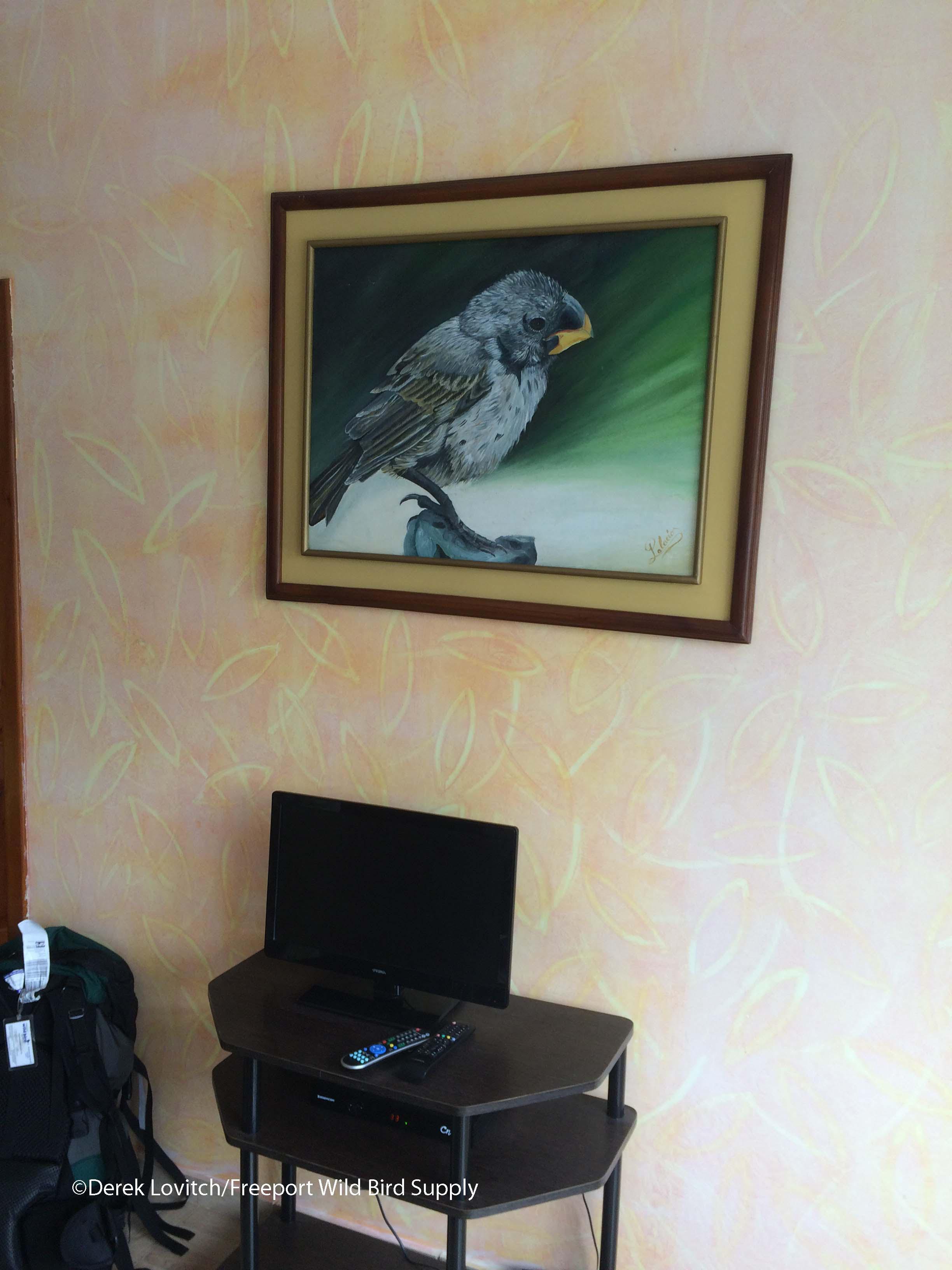Twon Lodges Room 2