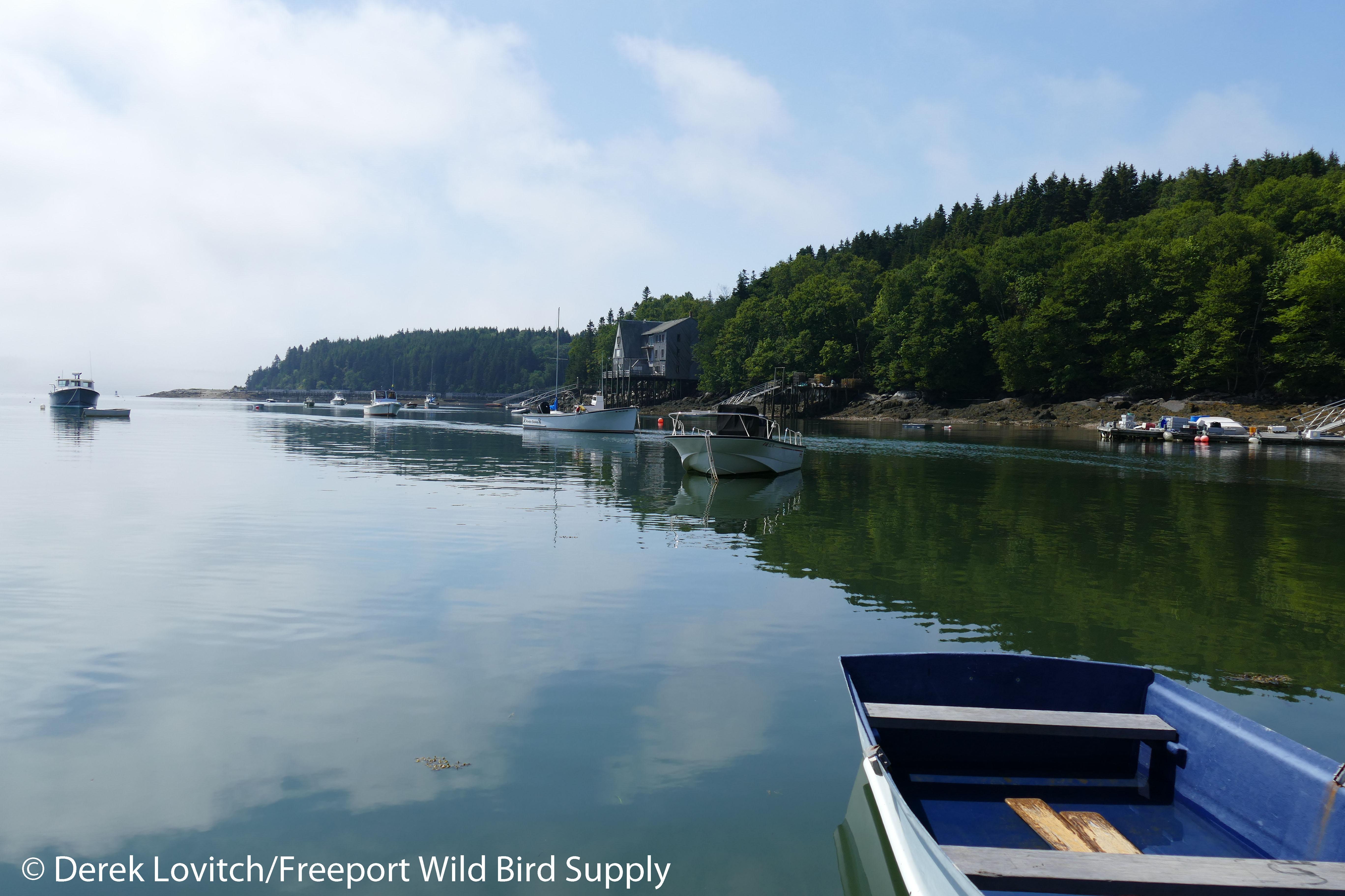 10. Burnt Coat Harbor-departing_edited-1