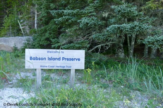 11. Babson Island1_edited-1