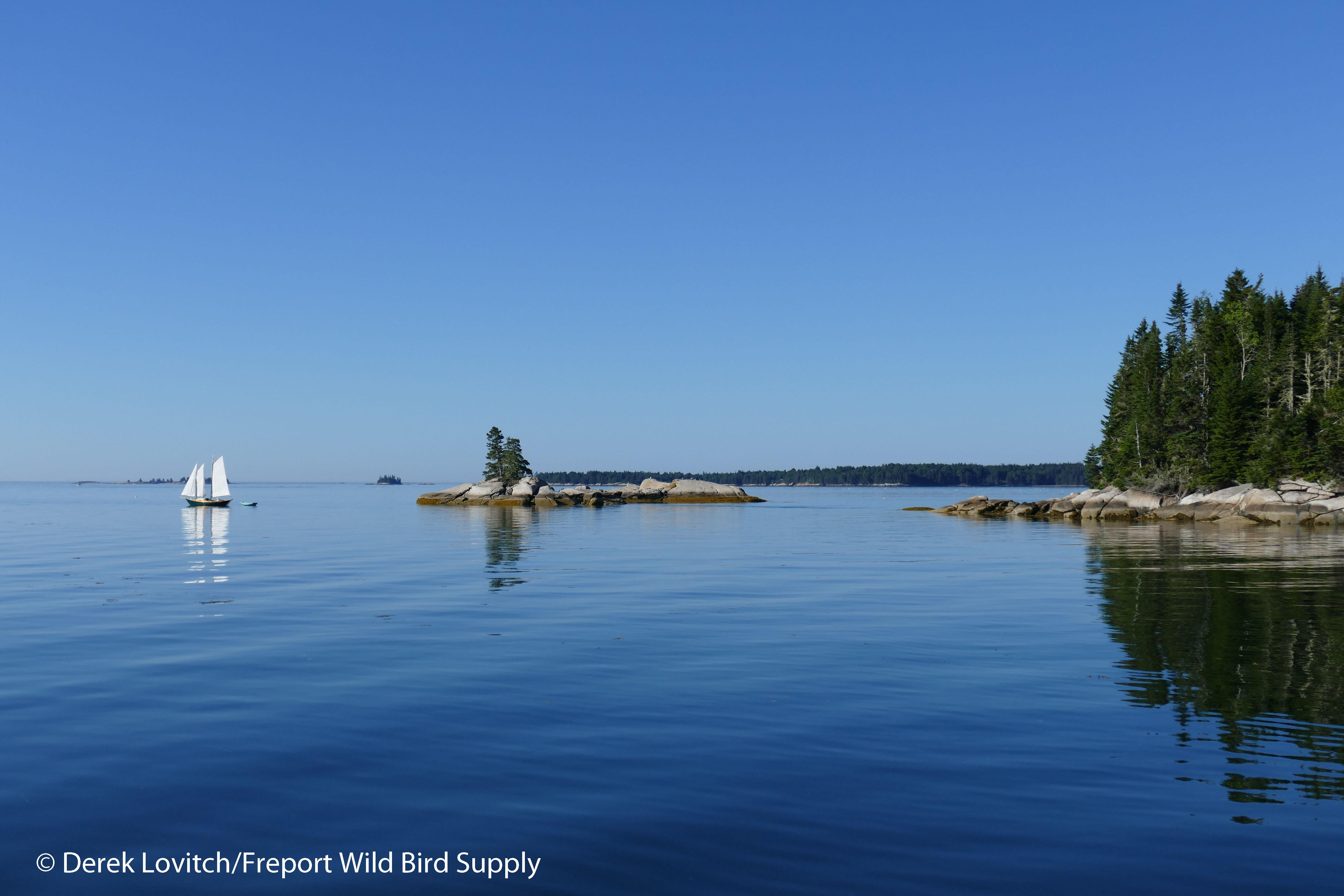19. Babson Island am_edited-1