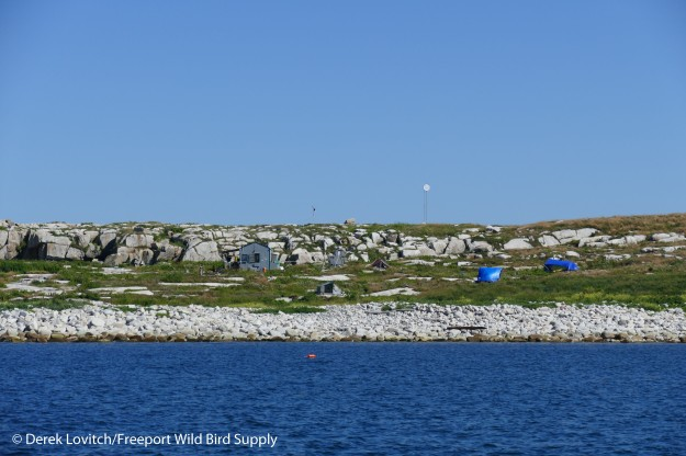 22. Seal Island approach_edited-1