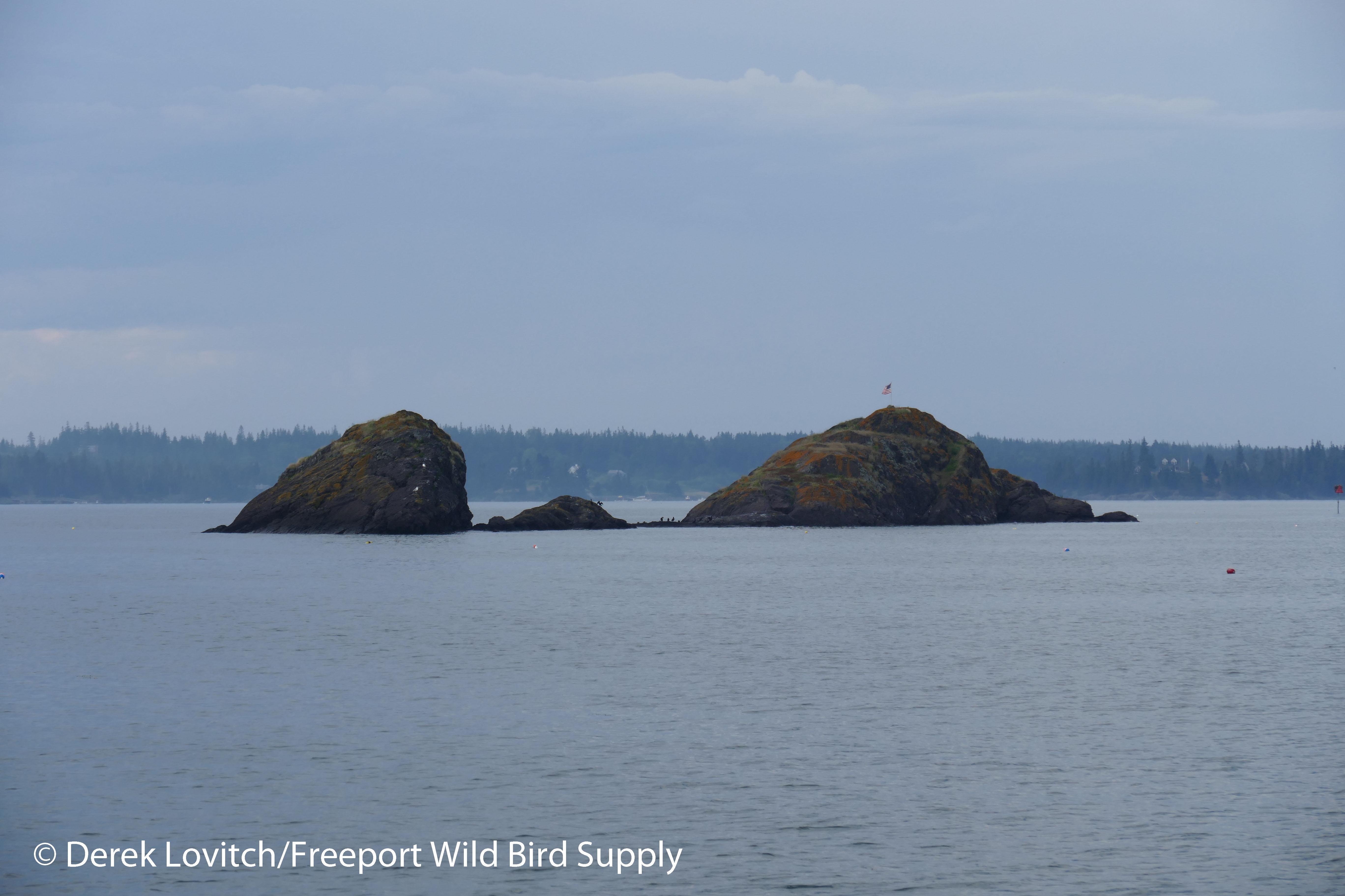 29. Fox Islands Thorofare 1_edited-1