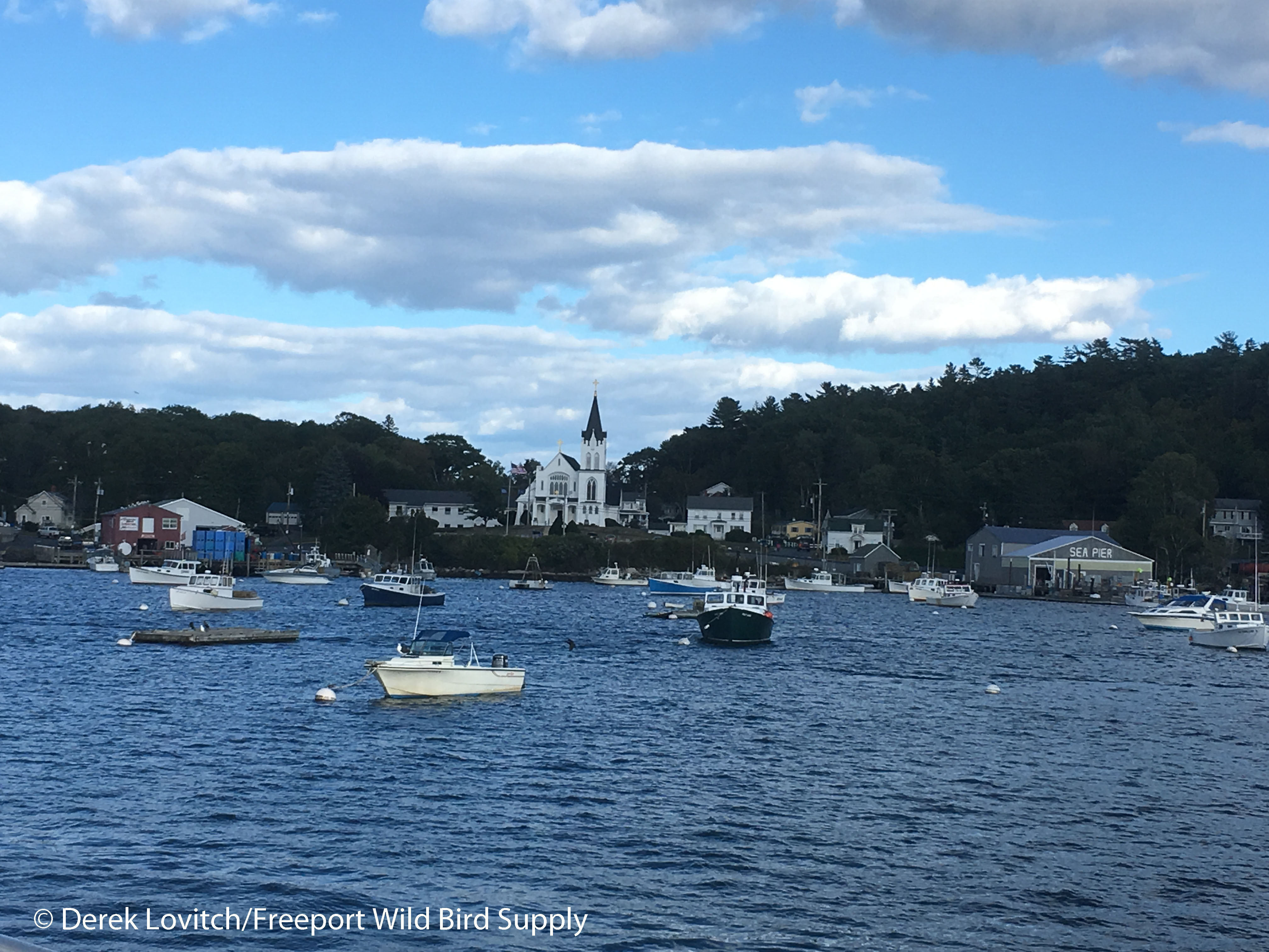 arriving_boothbay9-24_edited-1