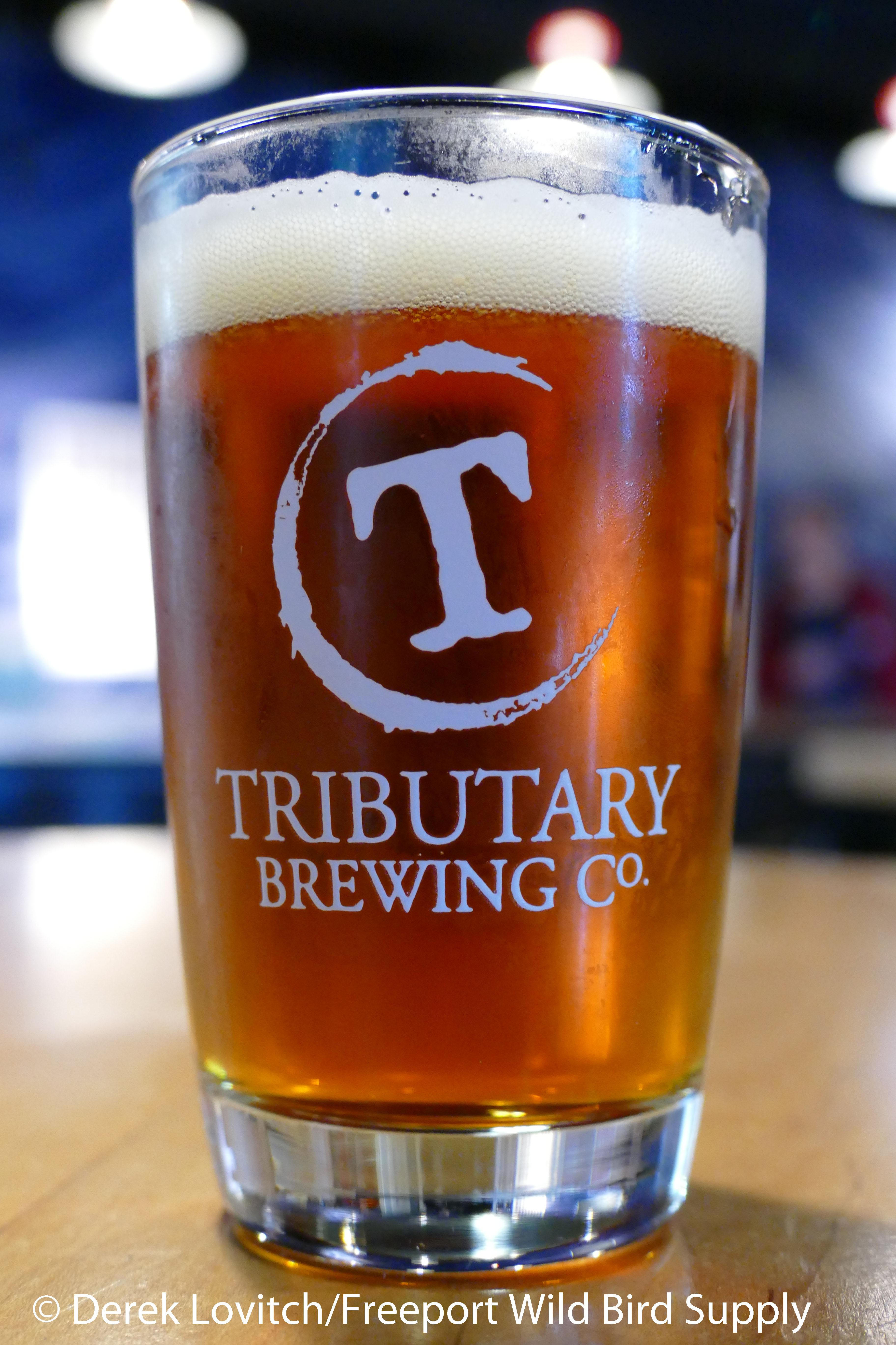 tributary_oktoberfest_glass_edited-1