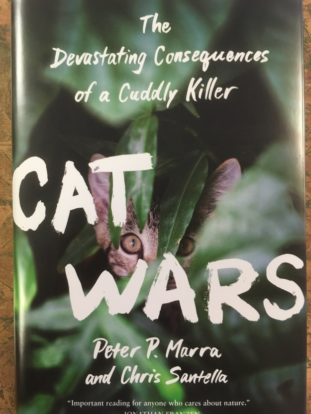 cat-wars-cover