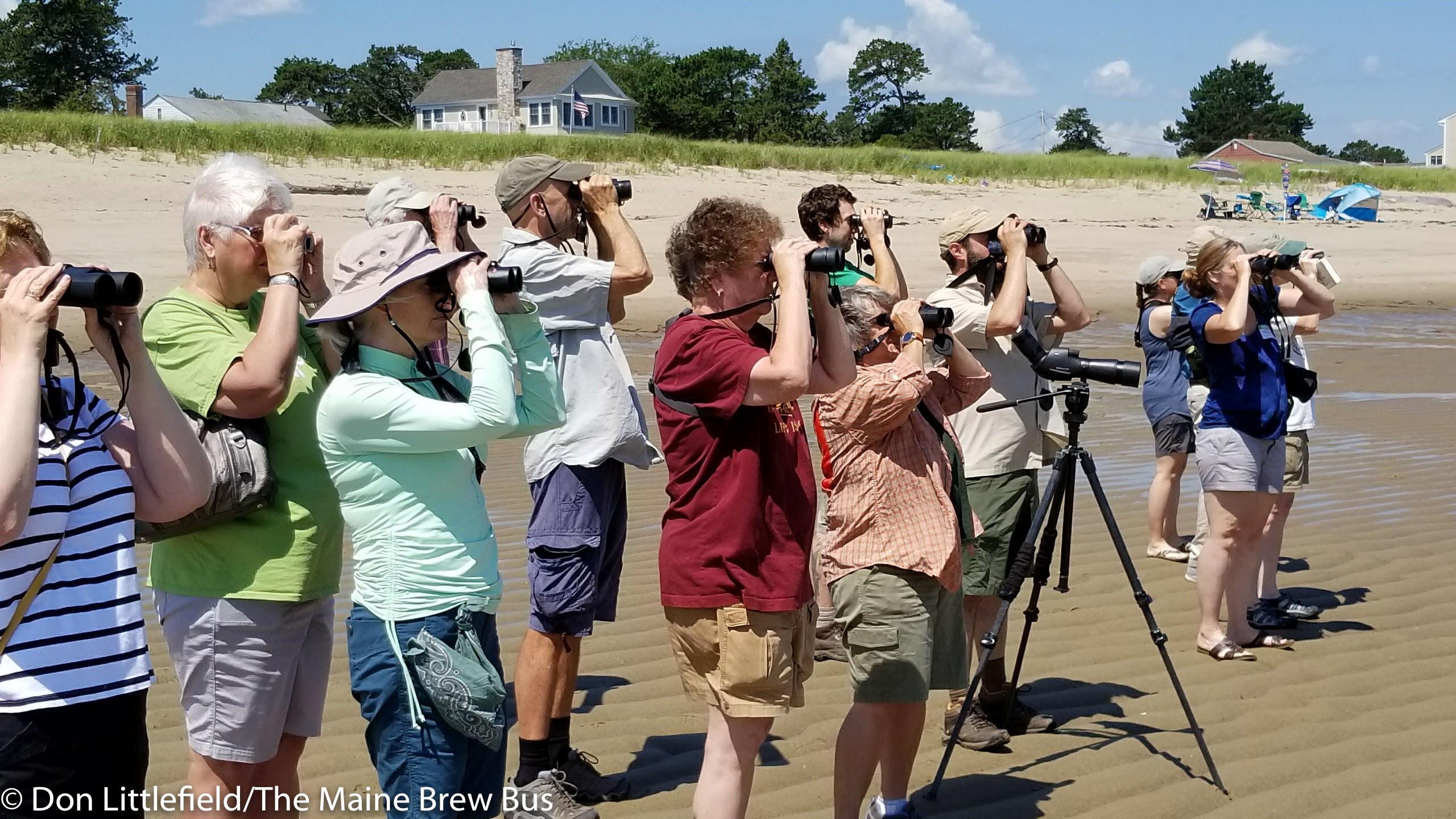 2. Group on beach 1