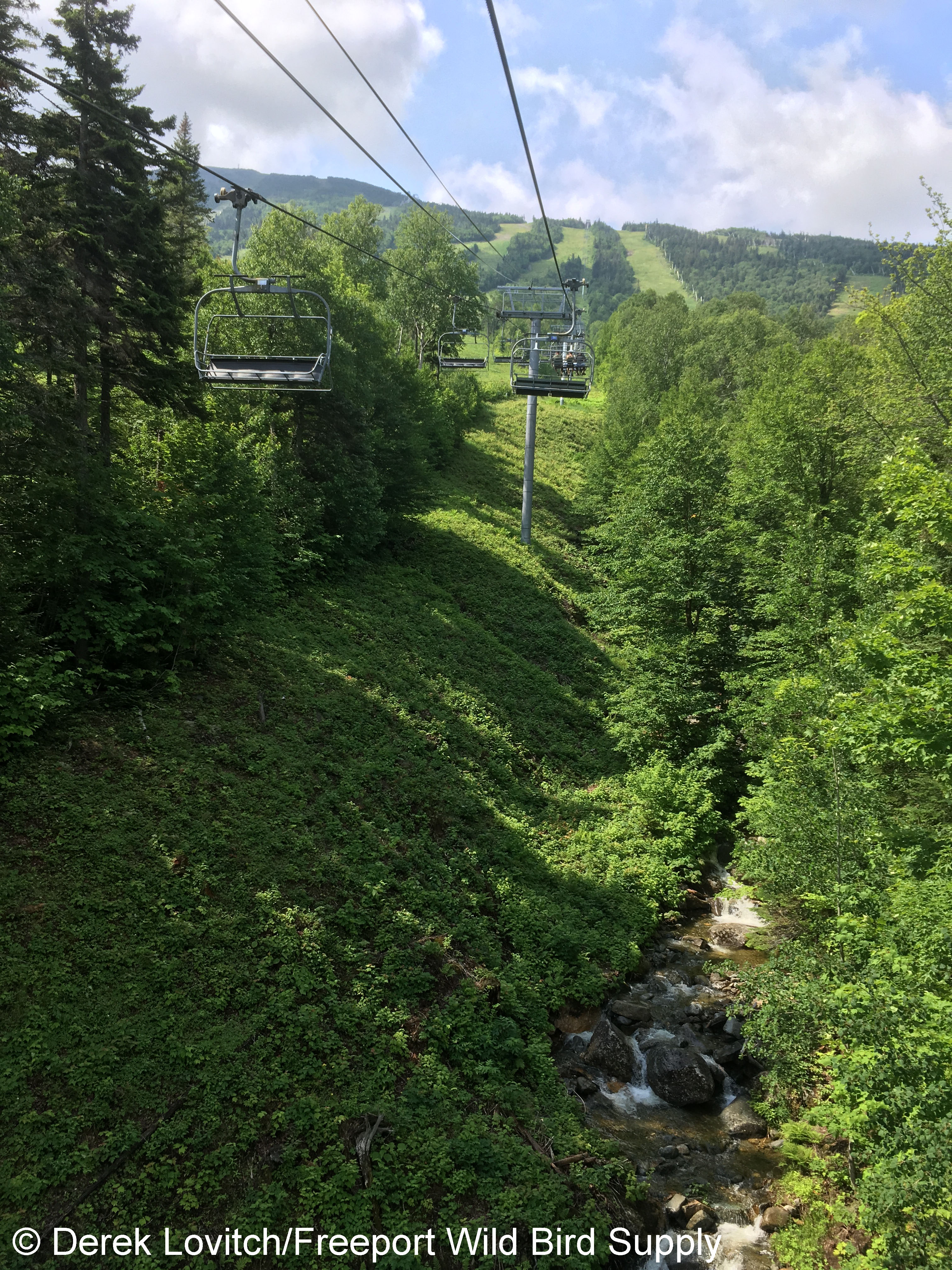 27. Chairlift2