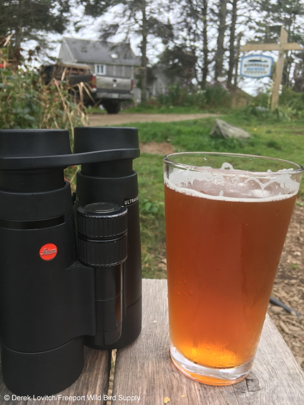beer_and_bins